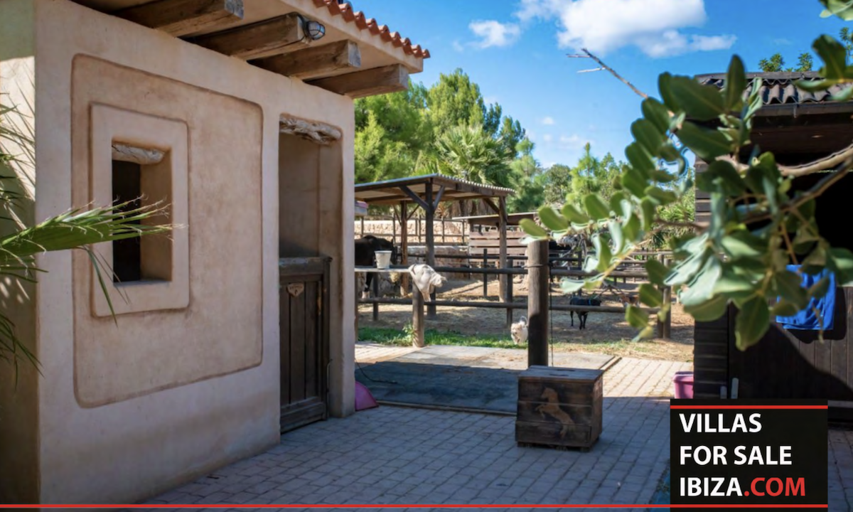 Villas for sale Ibiza - Finca Establos 28