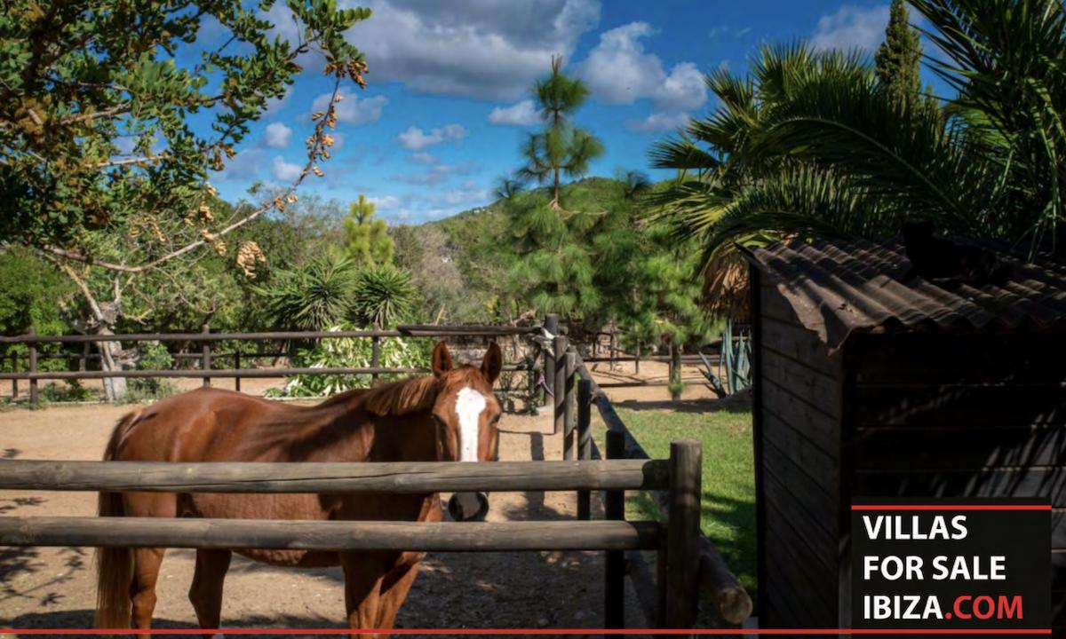 Villas for sale Ibiza - Finca Establos 39
